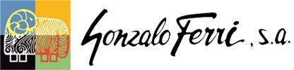 GONZALO FERRI